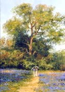 Bluebells and Edwardian Ladies